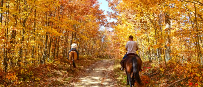 best horseback riding in ontario