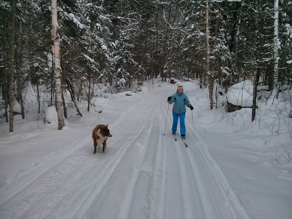 Photo of a Woman Nordic Skiing with Her Dog near the Best Couples Resort in Algonquin Park.